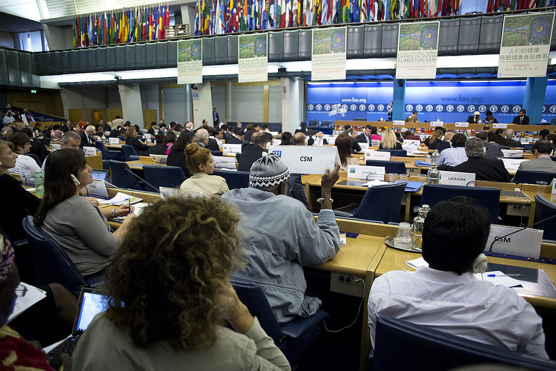 Civil society interjection during the CFS plenary Photo ©FAO/Alessia Pierdomenico