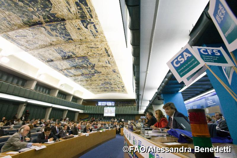 Plenary hall during CFS on the first year after its Reform.