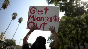 Argentinians protest Monsanto, credit: RT News https://www.rt.com/news/monsanto-argentina-health-problems-484/